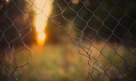 [Opinió] Sobre la llibertat en temps de confinament