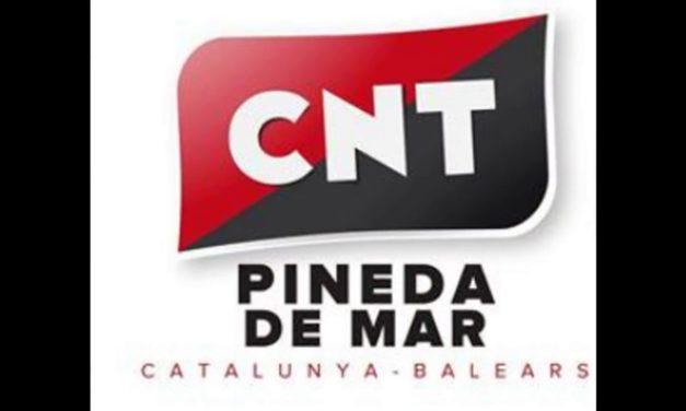 [Sindical] Comunicat de la Secció Sindical de la CNT d'Educació davant la possible apertura dels centres